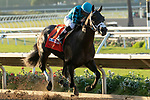 DEL MAR, CA  SEPTEMBER 2: #7 Nucky, ridden by Norberto Arroyo, Jr., in the stretch of the Runhappy Del Mar Futurity (Grade l) on September 2, 2019, at Del Mar Thoroughbred Club in Del Mar, CA.( Photo by Casey Phillips/Eclipse Sportswire/CSM)