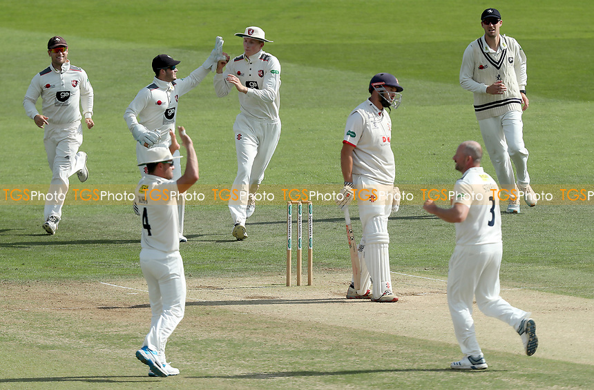 Nick Browne of Essex is surrounded by Kent players celebrating his wicket during Kent CCC vs Essex CCC, Specsavers County Championship Division 1 Cricket at the St Lawrence Ground on 20th August 2019