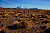 Mt Ngauruhoe & Mt Tongariro from the Rangipo desert at the base of Mt Ruapehu, Central Plateau, Tongariro National Park, North Island, New Zealand