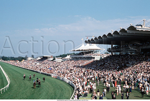 GOODWOOD 940727 Photo:Steve Bardens/Action Plus...1994.Horse Racing.equestrian sports.racecourses racecourse.venue venues.flat .equestrian sports