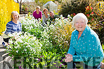 Pauline Dobbins shows her garden to Susan Dartby, Mary Fitzgerald, Audrey O'Sullivan and Martin Greenwood the committee are looking for more people to enter the Dingle Peninsula Open Gardens show on Sunday 28th June all proceeds will go to the Maine Valley Family Centre