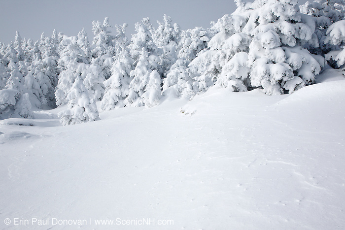 The summit of Mount Osceola in the White Mountains, New Hampshire USA during the winter months