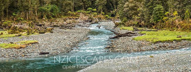 Pristine Jackson River, West Coast, South Westland, UNESCO World Heritage Area, New Zealand, NZ