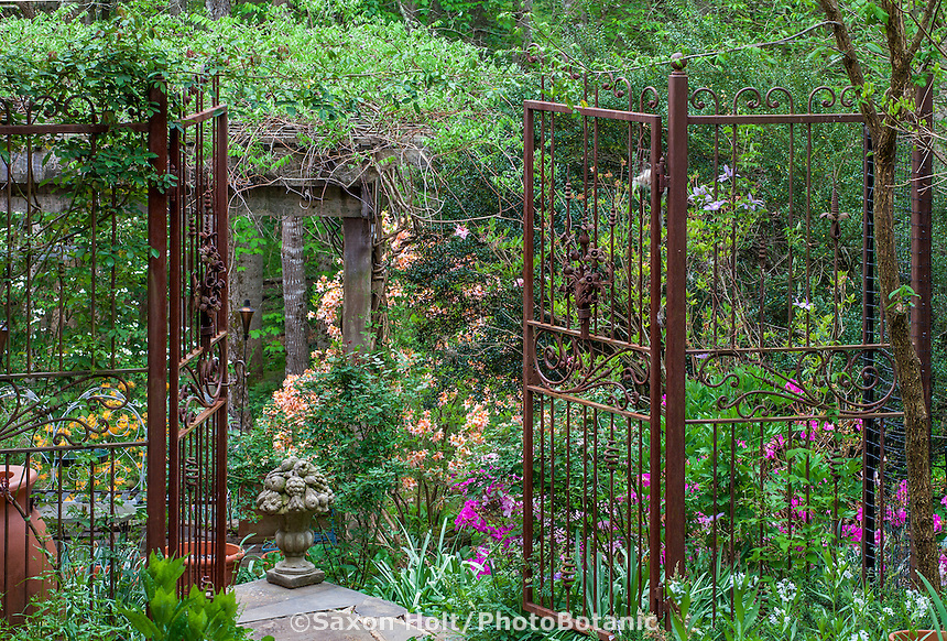Rusted metal entry gates into naturalistic woodland country secret garden with spring flowering shrubs, Boninti Garden, Virginia