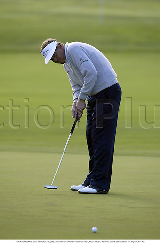 COLIN MONTGOMERIE (SCO) attempts a putt, 2002 American Express World Golf Championships, Mount Juliet, Co Kilkenny, Ireland, 020919. Photo: Neil Tingle/Action Plus...golf golfer player.putts putting............................................ ........................