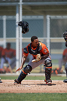 Baltimore Orioles catcher Yermin Mercedes (66) tracks down a loose ball during a minor league Spring Training game against the Tampa Bay Rays on March 29, 2017 at the Buck O'Neil Baseball Complex in Sarasota, Florida.  (Mike Janes/Four Seam Images)
