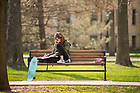 April 26, 2018; A student studies on a bench in the Main Quad. (Photo by Barbara Johnston/University of Notre Dame)