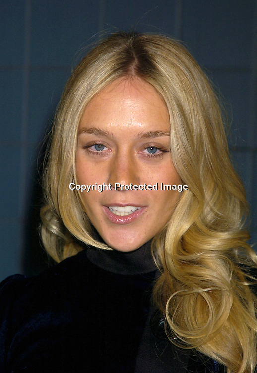 "Chloe Sevigny..at Director Woody Allen's  ""Melinda and Melinda"" New York special screening on March 16, 2005 at the Chelsea West Cinemas. ..Photo by Robin Platzer, Twin Images"