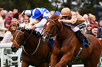 Winner of The CPA Scaffolding Maiden Stakes, Robin Weathers (brown) ridden by Daniel Muscutt and trained by William Haggas  during Ladies Evening Racing at Salisbury Racecourse on 15th July 2017