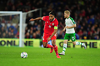 Ashley Williams of Wales in action during the UEFA Nations League B match between Wales and Ireland at Cardiff City Stadium in Cardiff, Wales, UK.September 6, 2018