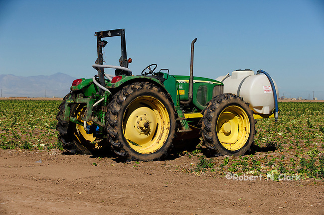 John Deere tractor parked on the edge of a lettuce field