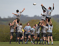 Sussex RFU XV (17) v Middlesex RFC (19)