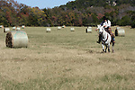 A cowboy galloping full speed in a Texan hayfield in fall