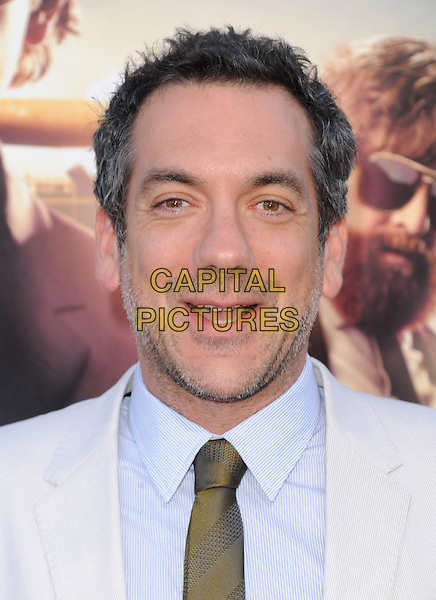 "Todd Phillips.""The Hangover Part III"" Los Angeles Premiere held at the Westwood Village Theater, Los Angeles, California, USA..May 20th, 2013.headshot portrait blue shirt green tie white cream stubble facial hair mouth open.CAP/DVS.©DVS/Capital Pictures"