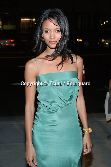 "Thandie Newton arriving at ""The Truth About Charlie"" premiere at the Academy of Motion Pictures in Los Angeles. October 16, 2002.           -            NewtonThandie11.jpg"