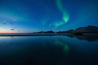 Northern Lights shine in sky over Ytresand beach, Moskenesøy, Lofoten Islands, Norway