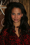 Denise Vasi at Marcia Tovsky's Holiday/Bon Voyage Party for AMC on December 1, 2009 at Nikki Midtown, New York City, New York. (Photo by Sue Coflin/Max Photos)
