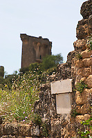 the ruin clos de papes paul avril chateauneuf du pape rhone france