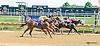 Motor City winning at Delaware Park on 9/7/15