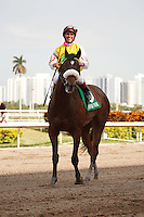 Grace Hall with jockey Javier Castellano after winning the Gulfstream Oaks (G2). Gulfstream Park Hallandale Beach Florida. 03-31-2012. Arron Haggart/Eclipse Sportswire