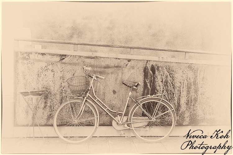 Bicycle waiting for owner