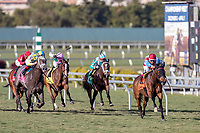 HALLANDALE BEACH, FL - JAN 13: Ultra Brat #7 with Nik Juarez in the irons takes the early lead in the running of the $150,000 Marshua's River Stakes for trainer H. Graham Motion at Gulfstream Park on January 13, 2018 in Hallandale Beach, Florida. (Photo by Bob Aaron/Eclipse Sportswire/Getty Images)