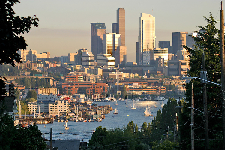 Seattle, skyline, Lake Union, view from Sunnyside Street, Wallingford, neighborhood, summer,