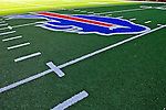 21 October 2007: The Buffalo Bills logo on the artificial turf at center field at Ralph Wilson Stadium in Orchard Park, NY. ..Mandatory Photo Credit: Ed Wolfstein Photo