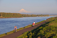 Bike path along Columbia River with Mt Hood