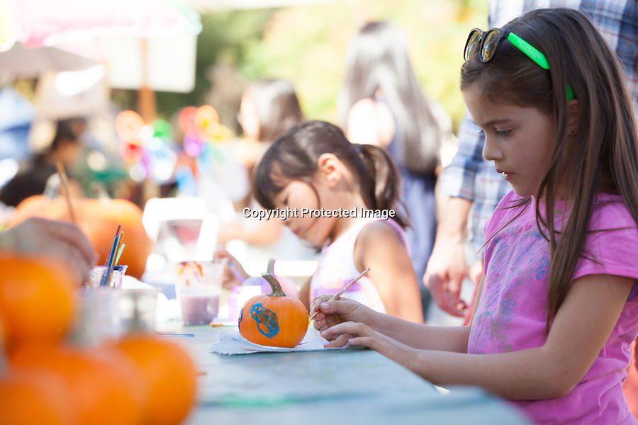 Charli Plut, 7, of Los Altos paints a pumpkin in the kids' craft area of the Los Altos Fall Festival.