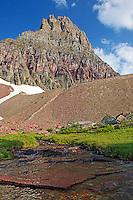 Mountain stream, Mt. Clemmens, Hidden Lake Trail, Glacier National Park