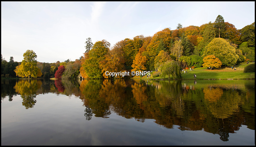 BNPS.co.uk (01202 558833)<br /> Pic: PhilYeomans/BNPS<br /> <br /> Stourhead gardens - Head gardener  Alan Power described it as 'one of the best displays in his 20 years' at the National Trust's stunning Wiltshire estate.<br /> <br /> Glorious autumn colour at its best across the south yesterday as the clear skys and mild weather produced one of natures most spectacular displays.