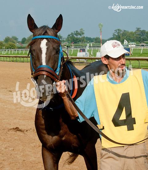 Secret Treasour beforeThe Bob Magness Memorial Arabian Derby (gr 2) at Delaware Park on 9/2/13