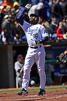 Royals right fielder Reggie Sanders looks up and points to the sky as he crosses home plate with a home run against Detroit at Kauffman Stadium in Kansas City, Missouri on April 7, 2007.  The Tigers won 6-5.