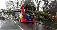 Double decker bus hit by tree as Storm Erik lashes Britain.