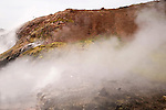Steamy Boiling Hot Spring near Reykholt in Iceland