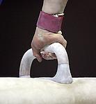 Australian Gymnastic Championships.Photo: Grant Treeby