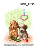 GIORDANO, CUTE ANIMALS, LUSTIGE TIERE, ANIMALITOS DIVERTIDOS, paintings+++++,USGI2899,#AC# ,dogs