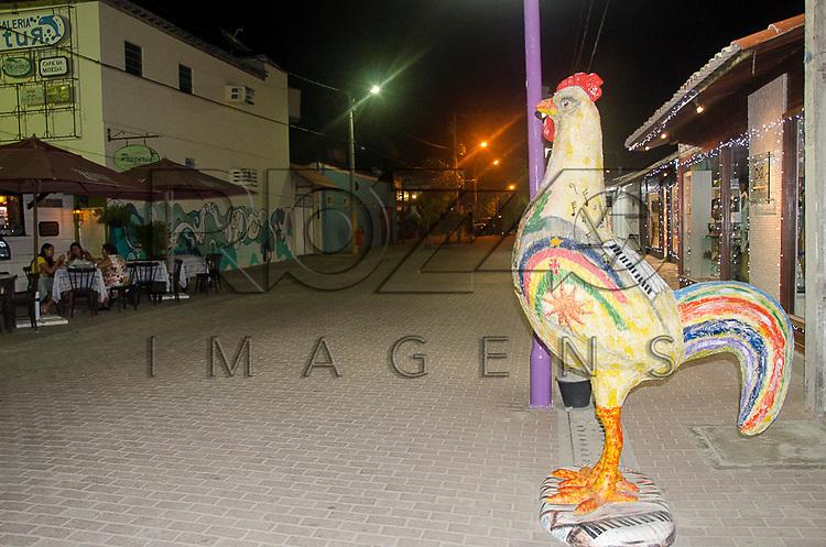 Escultura no centro de Porto de Galinhas - distrito Ipojuca - PE, 12/2012.