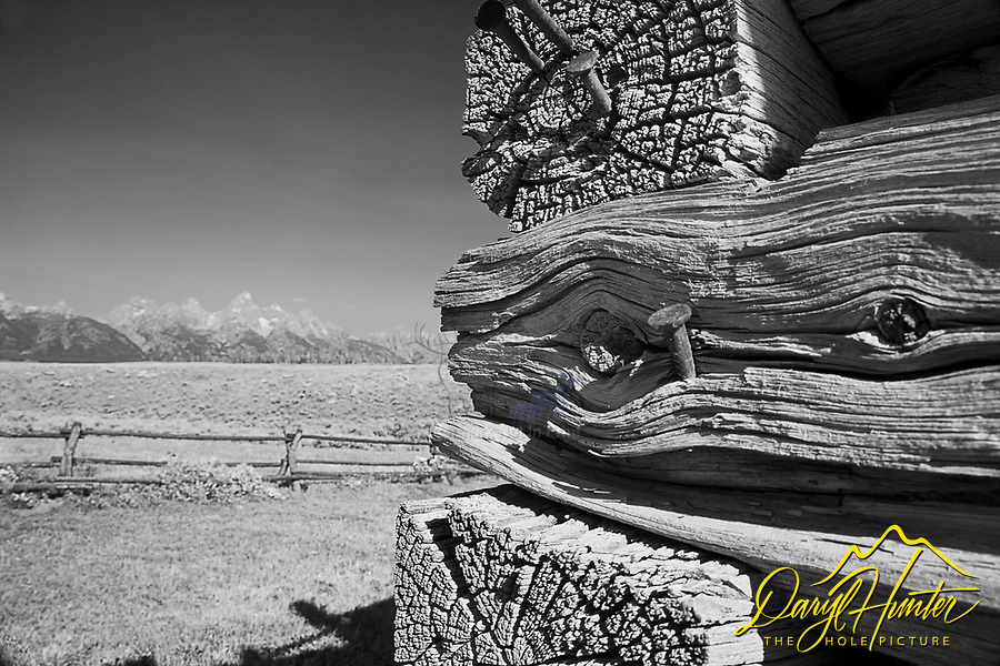 Shane Cabin, Grand Tetons, detail study, derelict buildings, Grand Teton Park