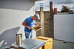 Germany, Berlin, 2017/09/07<br /> <br /> Ariel Klein-Nahari, beekeeper in Berlin