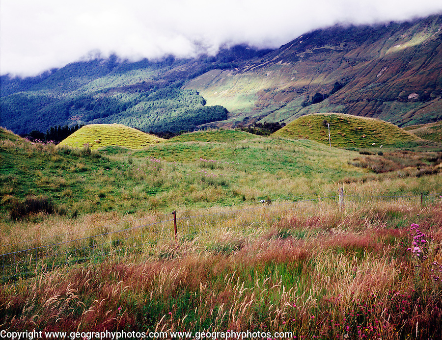 Drumlins in Glenorchy valley, South Island, New Zealand