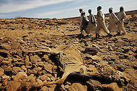 Four children walk every day three hours from their home to the Hammarai primary school in north Darfur on Nov 2004. the school has been reopened only a few days earlier after almoust eight months of stop due to the war in the region between the government of Sudan's army and the SLA ( sudan liberation army) rebel group.