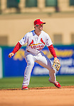 4 March 2013: St. Louis Cardinals infielder Pete Kozma in action during a Spring Training game against the Minnesota Twins at Roger Dean Stadium in Jupiter, Florida. The Twins shut out the Cardinals 7-0 in Grapefruit League play. Mandatory Credit: Ed Wolfstein Photo *** RAW (NEF) Image File Available ***