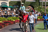 DEL MAR, CA  AUGUST 4:  #1 Oliver, ridden by Martin Garcia,, in the paddock before the Graduation Stakes  August 4, 2018 at Del Mar Thoroughbred Club in Del Mar, CA.  (Photo by Casey Phillips/Eclipse Sportswire/ Getty Images)