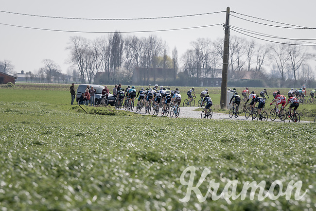 peloton <br /> <br /> 79th Gent-Wevelgem 2017 (1.UWT)<br /> 1day race: Deinze &rsaquo; Wevelgem - BEL (249km)
