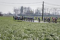 peloton <br /> <br /> 79th Gent-Wevelgem 2017 (1.UWT)<br /> 1day race: Deinze › Wevelgem - BEL (249km)