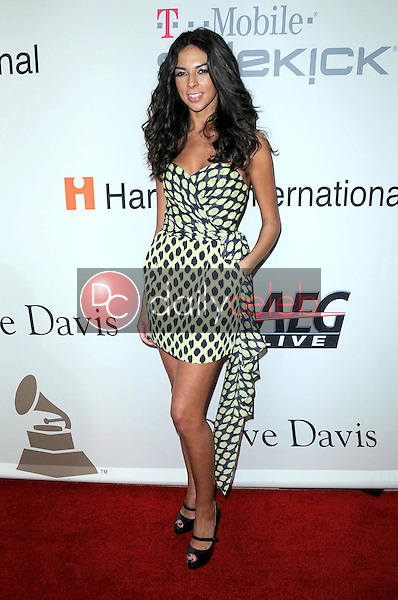 Terri Seymour<br />at the Salute To Icons Clive Davis Pre-Grammy Gala. Beverly Hilton Hotel, Beverly Hills, CA. 02-07-09<br />Dave Edwards/DailyCeleb.com 818-249-4998