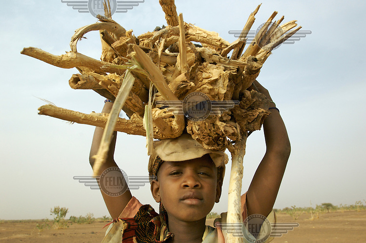 A young girl carries a bundle of firewood in the village of Intedeyne. Children's education remains a major challenge for Mali, which has the highest percentage of people living below the poverty line of any country in the world, with female literacy rates 50 percent lower than that of men...