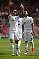 SUNDERLAND, ENGLAND - MAY 13: Kyle Naughton of Swansea City celebrates his goal during the Premier League match between Sunderland and Swansea City at the Stadium of Light, Sunderland, England, UK. Saturday 13 May 2017